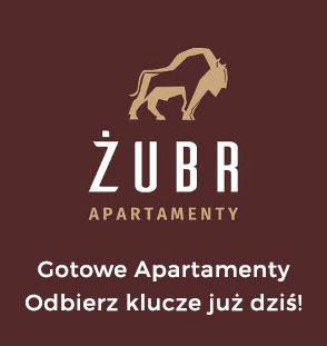 zubr_wisdom2-gotowe
